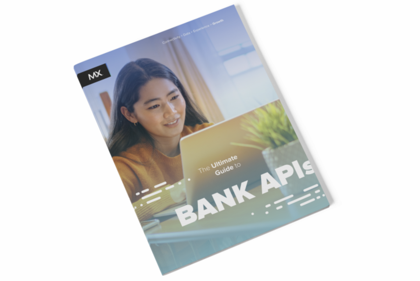guide to bank apis