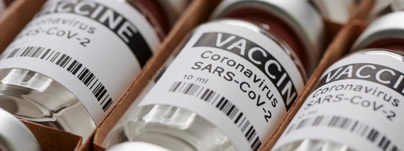 Vaccine 800x300